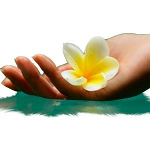 ПРИЙОМИ «ТИБЕТСЬКИЙ П'ЯТИЛИСНИК» ДЛЯ ЧУДОВОГО САМОПОЧУТТЯ ТА БЕЗДОГАННОЇ ЗОВНІШНОСТІ