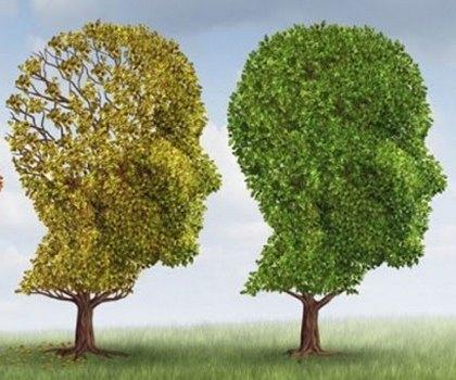 Як зберегти міцну пам'ять до старості та запобігти віковій недоумкуватості