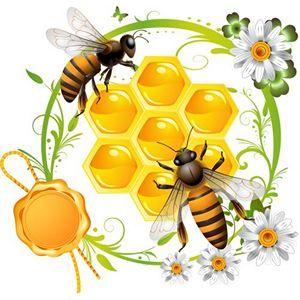 Под прицелом пчелиного жала - автоиммунные заболевания