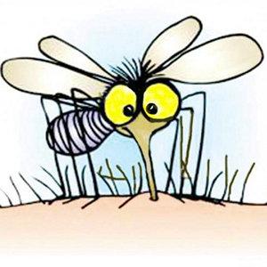Діагностує ... комар
