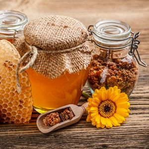 Бджолині продукти – «код» здоров'я людини