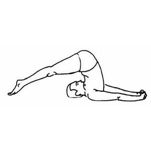 «ПОЗА ПЛУГА» ОМОЛОДИТЬ ТА ОЗДОРОВИТЬ ОРГАНІЗМ