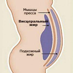 Вісцеральний жир - джерело проблем для чоловіків